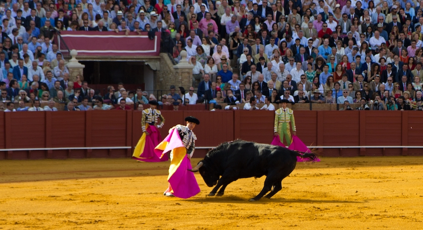 Коррида в Испании, бой быков
